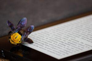 ereaders: de toekomst van het boek?