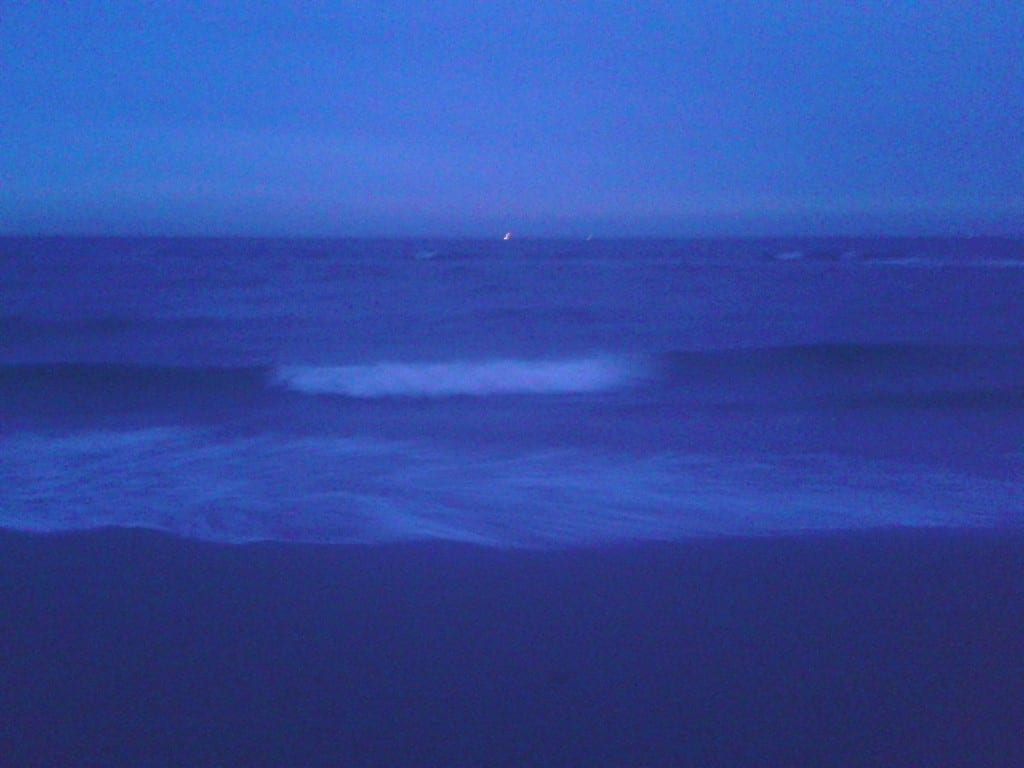 Zoute tranen, zilte zeelucht