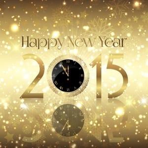 Jaaroverzicht 2014 en vooruitblik 2015