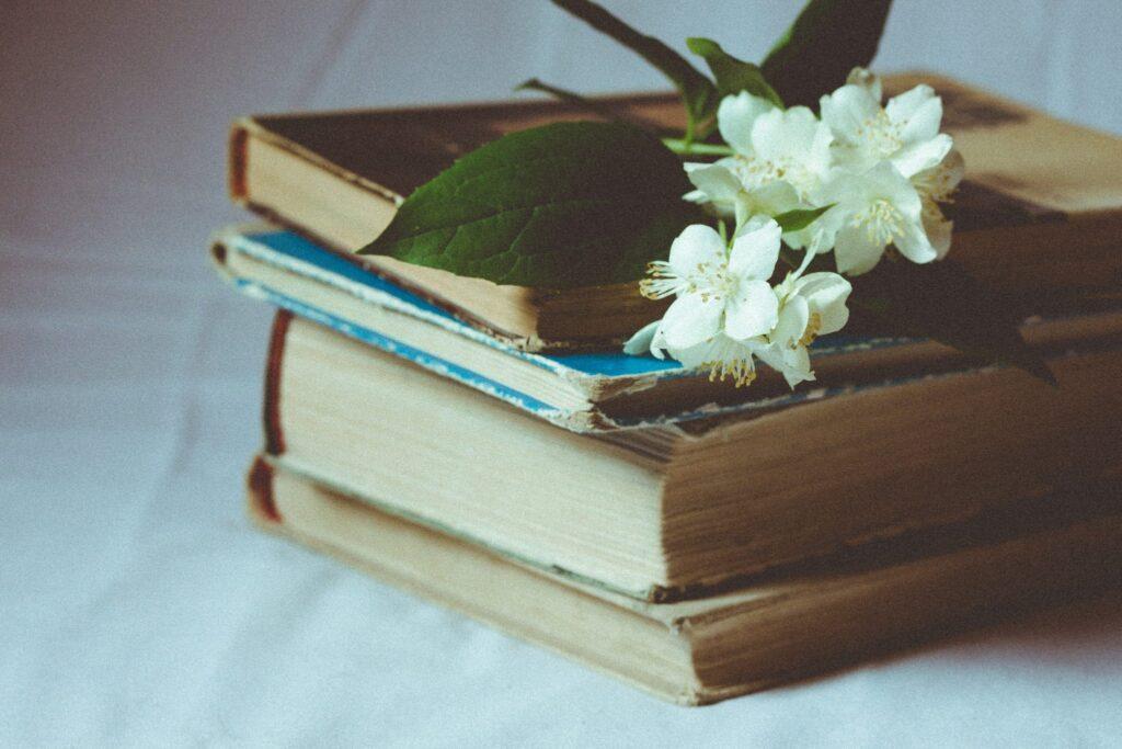 leesbenodigdheden, boeken