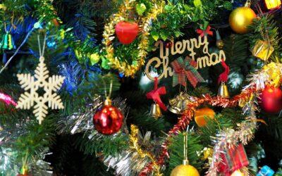 Waarom Pix een denkbeeldige kerstboom heeft – Irene